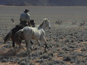 NAMIBIA 2016 - Crossing the Namib Desert by horse